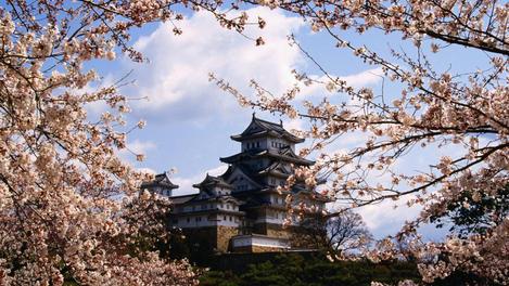 activities in Japan