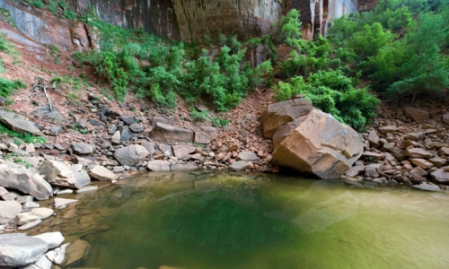 canyon tours, zion national park, college travel blog, budget travel blog