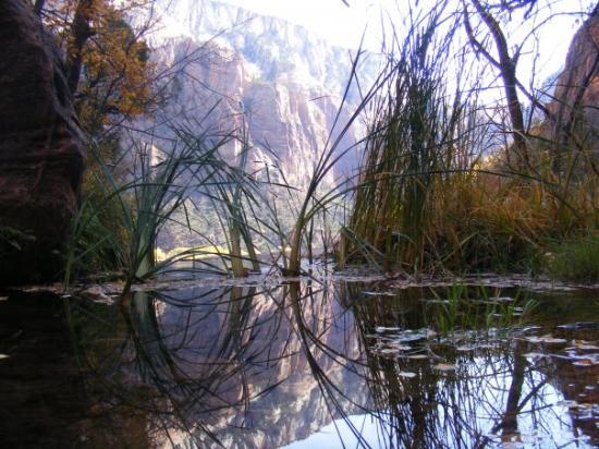 canyon tours, zion national park, budget travel blogs, college travel blog