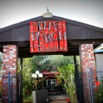 Check Out The Perch Brewery for a Tropical Escape