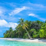 Best Island Destinations in January